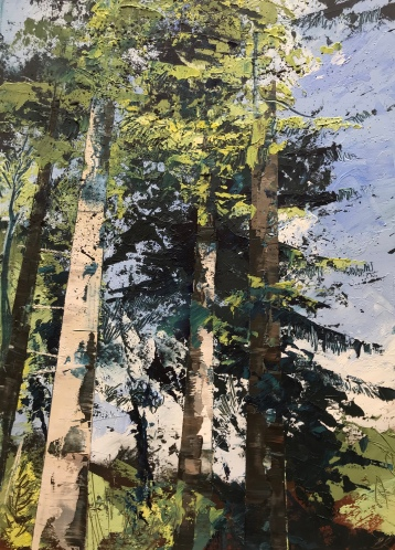 Blue Skies and Evergreens 25 x 35 cm oil on paper